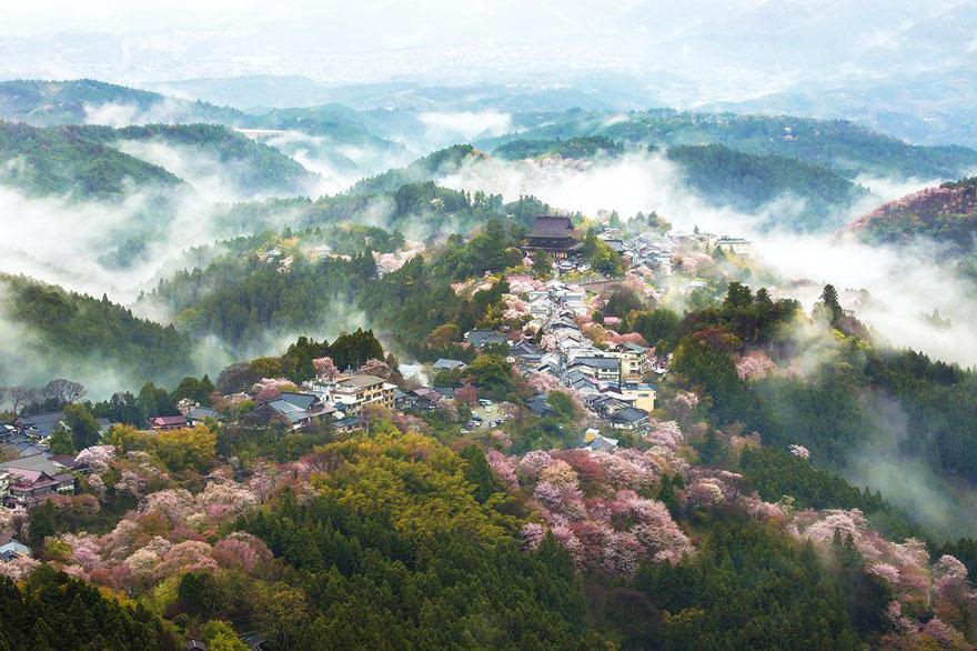 JAPORAMA: LE JAPON au PAYS-BASQUE